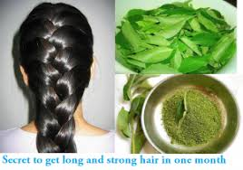 Image result for curry leaves benefits