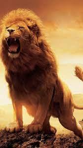 Lion Roaring Wallpapers - KoLPaPer ...