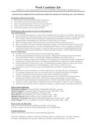 Sample Resume For Experienced Sales And Marketing Professional