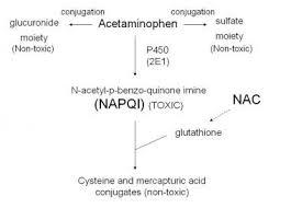Acetaminophen Toxicity Practice Essentials Background