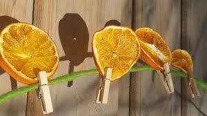 Orangen Trocknen Dörren Doerrautomat Kaufende