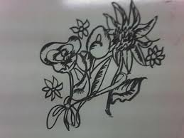 Resultado de imagen de imagenes de flores dibujadas