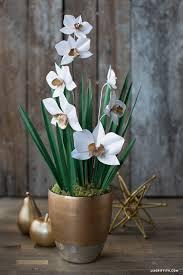 Paper Orchid Flower Paper Cymbidium Orchid Plant Lia Griffith