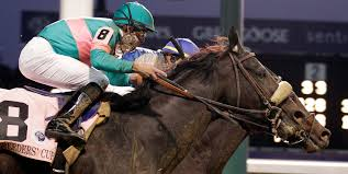 Breeders Cup Charts 2010 Zenyatta Falls To Blame In Breeders Cup Classic The New