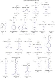 Amino Acid Characteristics Chart Amino Acids An Overview Sciencedirect Topics