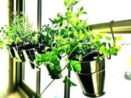 herb garden kit grow light herb garden indoor herb garden kit with grow light best grow