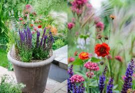 Fresh Container Gardening Vegetables Pot Size 6084Container Garden Ideas Uk
