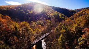 Image result for autumn train ride farmville va