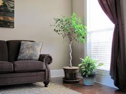 Living Room Corner Decoration Decorative Plants For Living Room Artificial Plants Living Room