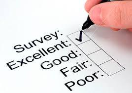 Image result for survey cartoon image