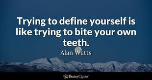 Define Quote Delectable Define Quotes BrainyQuote
