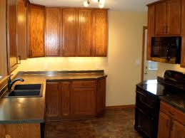 Poplar For Cabinets Custom Cabinets Jcarstenhomes