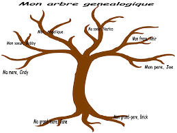 Family Tree Background Clipart
