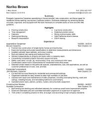 Apprentice Carpenter Resume Sample
