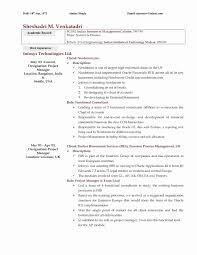 Consulting Resume Examples Elegant Elegant Accountant Resume