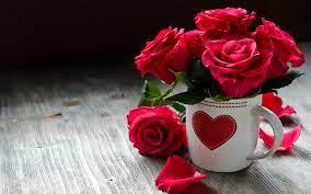 Rose Color Beautiful Flowers Wallpaper ...