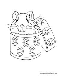 Small Picture Guinea pig in a box coloring pages Hellokidscom