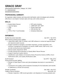 Best Audit Assistant Resumes Resumehelp