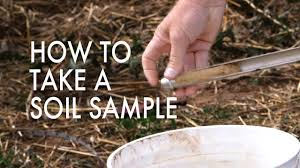 How To Take A Soil Sample