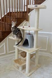 cheap pet furniture. Amazon.com : Armarkat Cat Tree Model A6501, Beige Trees Cheap Pet Furniture B