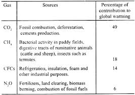 essay on global warming and greenhouse effect co2 is responsible for about half the global warming other pollutants and the other green house gases account for the rest the global temperature has