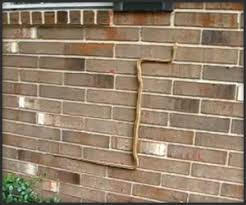 Image result for snake in the wall