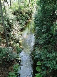「玉川上水」の画像検索結果