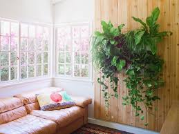 Indoor Green Wall With Simple Attached To A Wooden Wall With Vase Ideas For  Make Your
