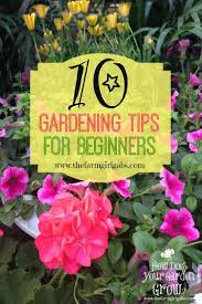 flower gardening for beginners. 10 simple gardening tips and ideas for beginners. spring is almost here. it\u0027s time to plan your vegetable flower gardens. beginners