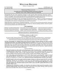 Sample CEO Resume PDF