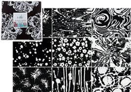 MSQC Tutorial - Starburst Quilt & Get the Fabric Jenny used! Adamdwight.com