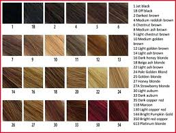 Natural Hair Colour Chart Find Your Perfect Hair Style