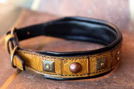 padded leather dog collar terra by work sauri