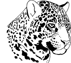 Small Picture Jaguar Coloring Pages fablesfromthefriendscom