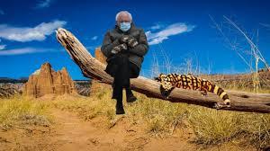 Bernie Sanders meme gets out and about in Utah
