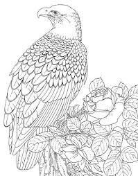Small Picture Online Coloring Pages Picture Gallery For Website Online Coloring