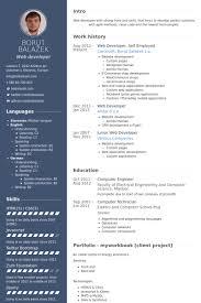 Web Developer, Self Employed Resume samples