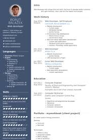 web developer cv