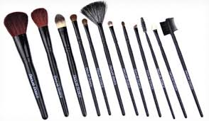 beaute basics 12 piece professional brush set