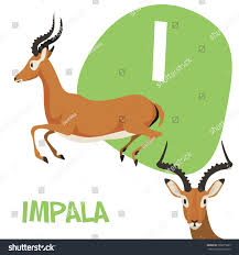 stock vector funny cartoon animals vector alphabet letter for kids from a to z i is impala vector illustration