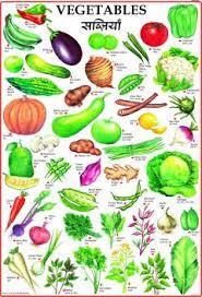 Vegetables Chart Vegetables Chart For Children Paper Print Children Posters