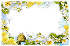 Wallpaper Borders Birds And Flowers ...