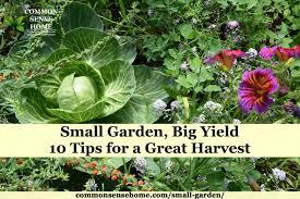small garden ideas 10 tips to grow