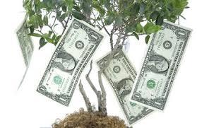 Nonprofit Budgeting Nonprofit Budget Management Policies Chron Com