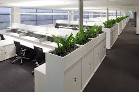 office planter boxes. Office Planter Boxes With Oxy Box CSM Furniture Solutions  Wide Range Office Planter Boxes U