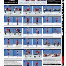 3 Bowflex Ultimate Exercise Chart Get Free High Quality