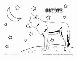Small Picture Coyote Coloring Pages Pagepng Coloring Pages clarknews