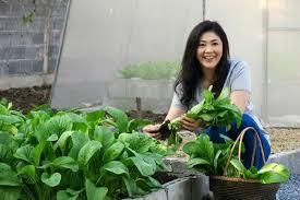 Kết quả hình ảnh cho bà Yingluck trồng rau
