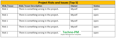 Project Management Report Templates One Page Project Status Report Template A Weekly Status