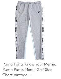 Puma Golf Size Chart Pume Fuma Putia Puma Puma Puma Pants Know Your Meme Puma
